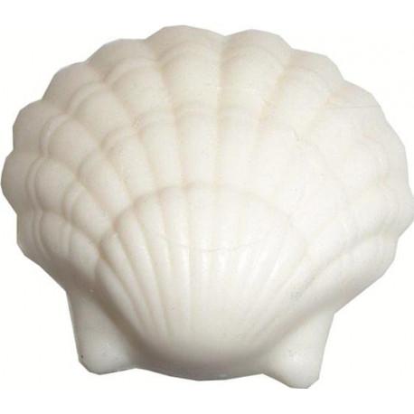 Savon Coquillage blanc